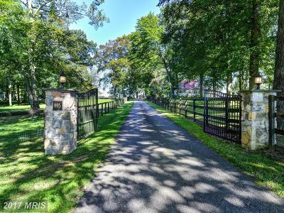 Cecil Farm For Sale: 895 Warburton Road