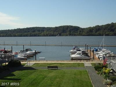 Port Deposit Townhouse For Sale: 320 Rowland Drive