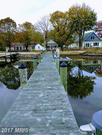 Elkton Single Family Home For Sale: 28 Blossom Lane