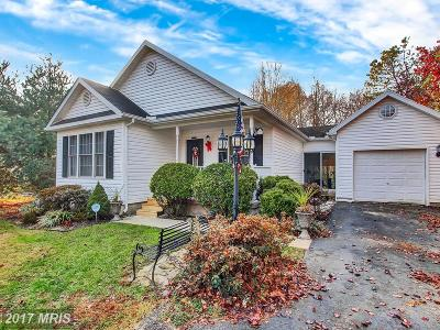 North East Single Family Home For Sale: 313 Manor Avenue
