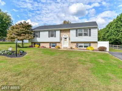 Earleville Single Family Home For Sale: 123 Tockwogh Drive