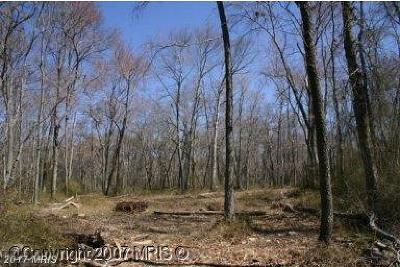 Conowingo Residential Lots & Land For Sale: Red Hill Road E