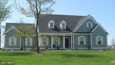 Conowingo Single Family Home For Sale: 8 Arc Rd