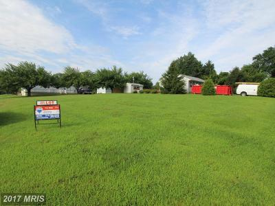 Earleville Residential Lots & Land For Sale: Delaware Avenue