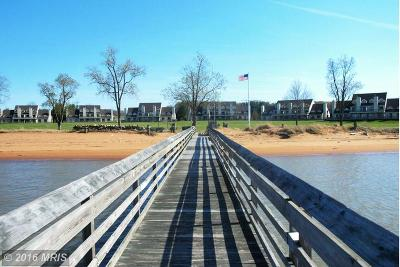 Chesapeake City MD Condo/Townhouse Sold: $285,000