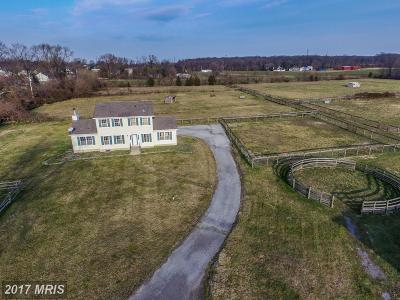 Cecil Farm For Sale: 36 Main Street