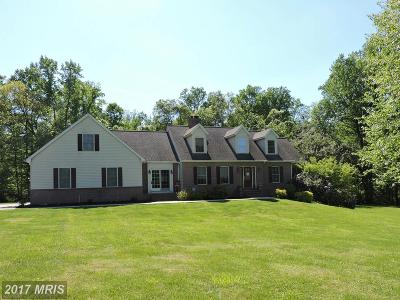 Elkton Single Family Home For Sale: 49 Hall Road