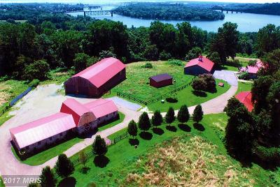 Perryville Farm For Sale: 80 Alstone Lane