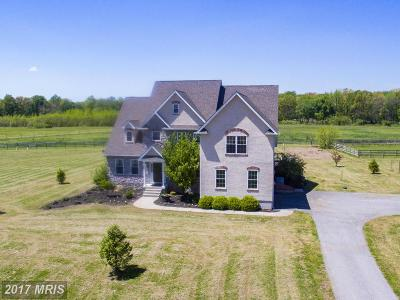 Cecil Farm For Sale: 279 Joe Meltz Road