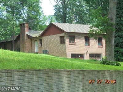 Elkton Single Family Home For Sale: 460 Blacksnake Road