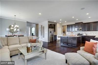 Waldorf Single Family Home For Sale: 11049 McIntosh Court