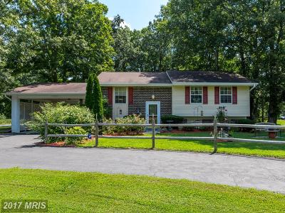 Waldorf Single Family Home For Sale: 7865 Bensville Road