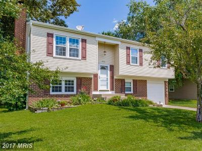 Waldorf Single Family Home For Sale: 2346 Mail Coach Court