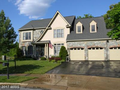 Waldorf Single Family Home For Sale: 3029 Dahoon Court