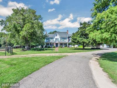 Charles Single Family Home For Sale: 16340 Woodville Road