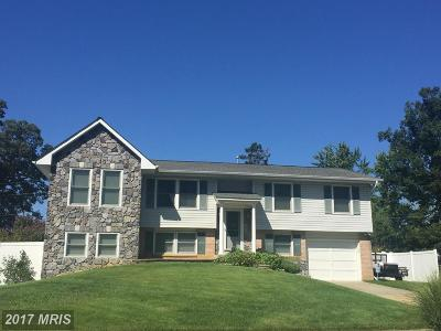 Waldorf Single Family Home For Sale: 922 Sloan Avenue