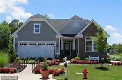 Waldorf Single Family Home For Sale: 5709 River Shark Lane