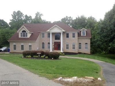 Waldorf Single Family Home For Sale: 2696 Kirk Drive
