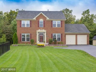 Waldorf Single Family Home For Sale: 9004 Carthage Court