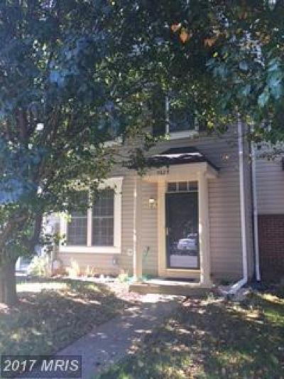 Rental For Rent: 9829 Larson Place