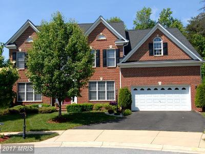 Waldorf Single Family Home For Sale: 10835 Big Leaf Court