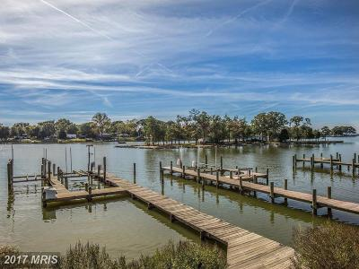 Charles Single Family Home For Sale: 16141 Cobb Island Road