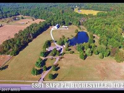 Hughesville Farm For Sale: 5861 Sapp Place