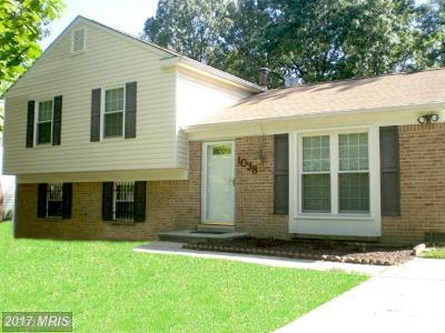 Waldorf Single Family Home For Sale: 1038 Bannister Circle