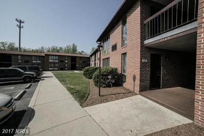 Waldorf Multi Family Home For Sale: 2165 Crain Highway