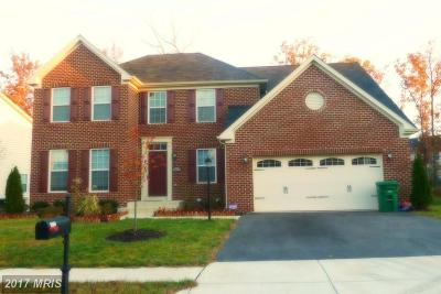 Waldorf Single Family Home For Sale: 3017 Dahoon Court