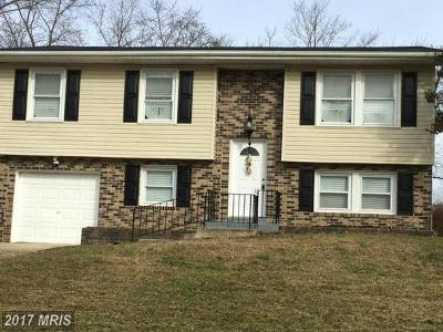 Waldorf Single Family Home For Sale: 1316 Wilson Road