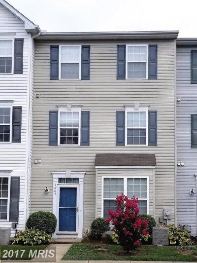 Denton Single Family Home For Sale: 1407 Blue Heron Drive