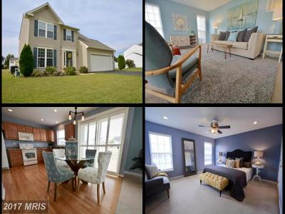 Stafford, Caroline, King George, Culpeper, Orange Single Family Home For Sale: 269 Tidewater Circle