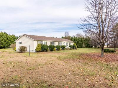 Caroline Single Family Home For Sale: 22546 Ash Boulevard