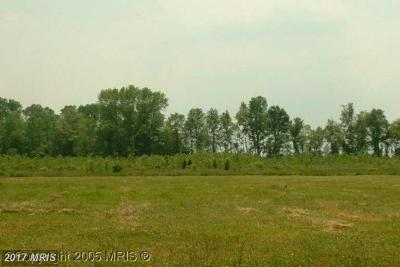 Caroline Residential Lots & Land For Sale: Bloomingdale Ave.