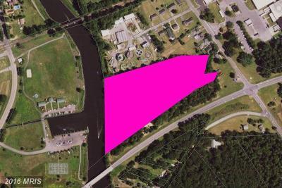 Bethlehem, Denton, Federalsburg, Goldsboro, Greensboro, Henderson, Hillsboro, Marydel, Preston, Queen Anne, Ridgely Residential Lots & Land For Sale: Not On File Road
