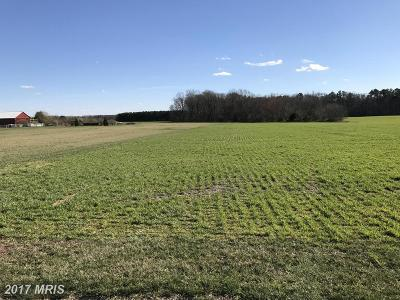 Greensboro MD Residential Lots & Land For Sale: $249,500