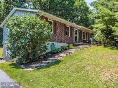 Mount Airy Single Family Home For Sale: 4489 Old National Pike