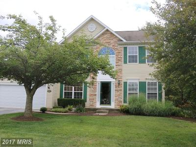 Westminster Single Family Home For Sale: 309 Moores Branch Circle
