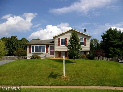 Single Family Home For Sale: 387 Mountain Laurel Court