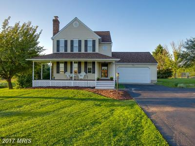 Single Family Home For Sale: 3826 Bark Hill Road