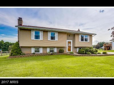 Sykesville Single Family Home For Sale: 1005 Caren Drive