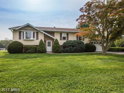 Mount Airy Single Family Home For Sale: 5191 Perry Road