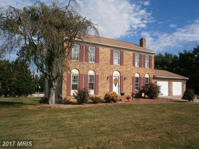 Mount Airy Single Family Home For Sale: 6602 Christy Acres Circle
