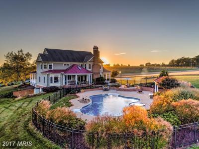 Westminster Single Family Home For Sale: 4261 Salem Bottom Road