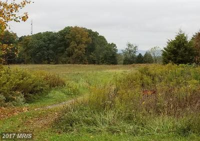 Residential Lots & Land For Sale: Bullfrog Road
