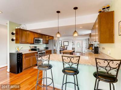 Mount Airy Single Family Home For Sale: 2521 Flag Marsh Road