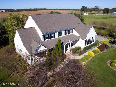 Single Family Home For Sale: 2976 Lonesome Dove Road