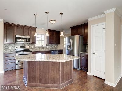 Carroll Single Family Home For Sale: 838 Regent Street