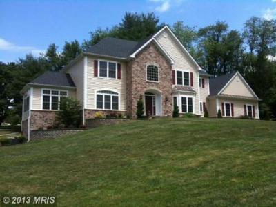 Luxury Homes in Sykesville